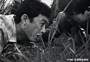 2yamiwosakukuchibue_tv202006.jpg